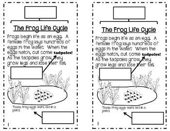 Nonfiction Text Features FROG