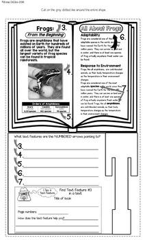 Nonfiction Text Features Flip Flap Book