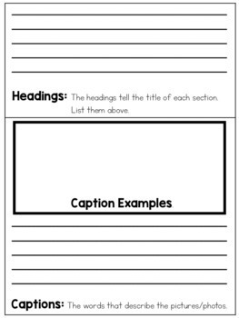 Nonfiction Text Features Flipbook for Primary Grades