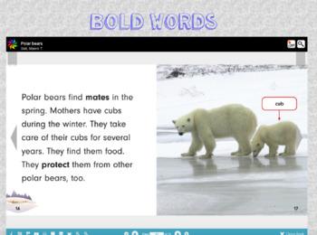 Nonfiction Text Features Flipchart
