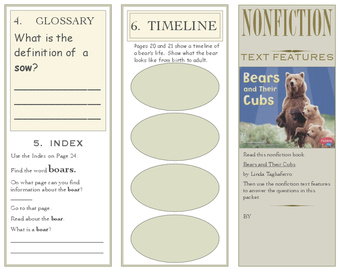 Nonfiction Text Features Pamphlets:11 Different Activities!