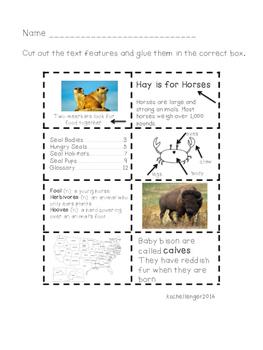 Nonfiction Text Features Practice