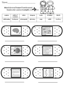 Text Features Worksheet Middle School Worksheets for all ...