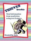 Nonfiction Text Features {THIEVES}