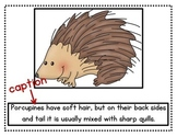 Nonfiction Text Features: Writing Captions