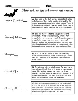 Nonfiction Text Structure - Bat Facts