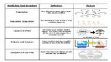 Nonfiction Text Structure Pack