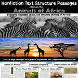 Nonfiction Text Structure Passages: Animals of Africa! + Digital Version