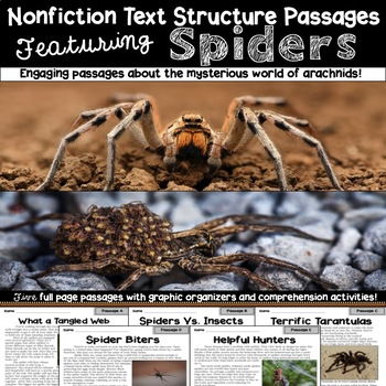 Nonfiction Text Structure Passages: Spiders!