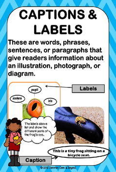Reading Nonfiction Text and Graphic Features Poster Set - FROG Theme