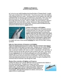 Nonfiction Word Analysis: Dolphins and Porpoises