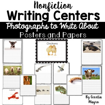 Nonfiction Writing Centers