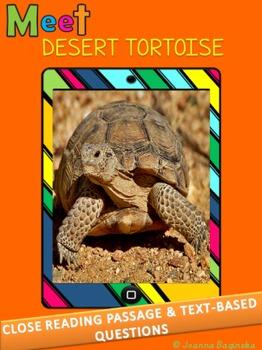 Desert tortoise: nonfiction, leveled close reading passage; CCSS aligned