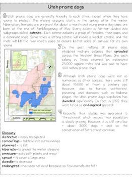 Utah prairie dogs: LEVELED nonfiction, close reading passage; CCSS aligned