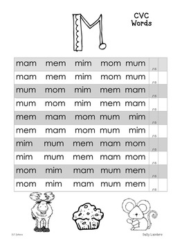 Nonsense Word Fluency {DIBELS Next NWF} I Can Read! Phonics Pack