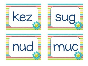 Nonsense Word Fluency Flash Cards