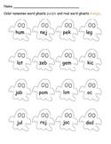 CVC Nonsense Word Fluency {Halloween Activity}