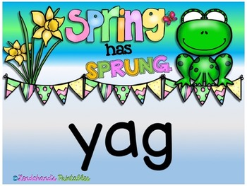 Nonsense Word Fluency Powerpoint (Spring Theme) by Ms. Lendahand