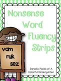 Nonsense Word Fluency Strips