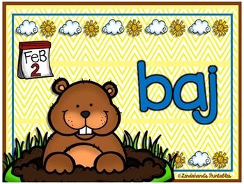 Groundhog Day Nonsense Word Fluency R.T.I. Resource Pack