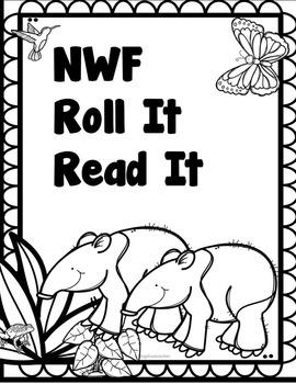 Nonsense Word Roll It Read It