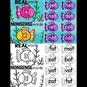 Nonsense Words and Real Words