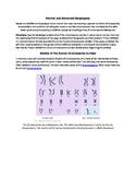 Normal and Abnormal Karyotype Analysis