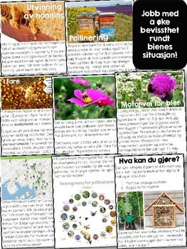 Norsk faktabok: Bier og pollinering! Faktatekst med ekte bilder! [BM & NN]