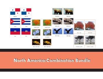 North America Combination Bundle