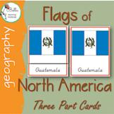 North America Flags 3 Part Cards CURSIVE