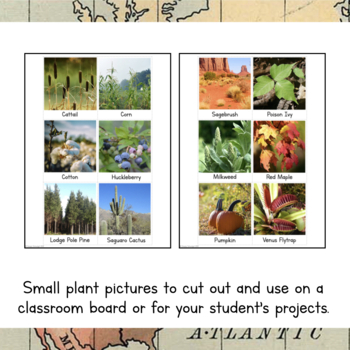 North America Unit Study: Plants of North America Information Cards
