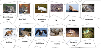 North American ANimals Jigsaw Puzzle
