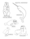 North American Animals Colouring Pages