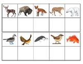 North American Animals:  Mini Matching and Vocabulary Enri