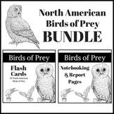 North American Birds of Prey BUNDLE