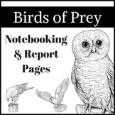 North American Birds of Prey Research / Report Pages