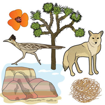 North American Desert Clip Art