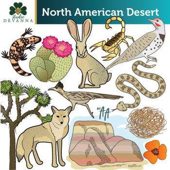 North American Desert Clip Art