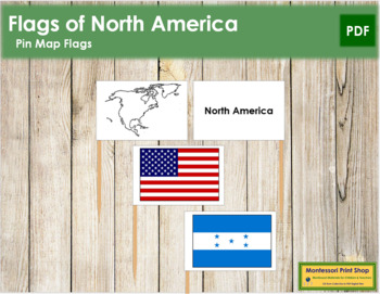 North American Flags - Pin Map Flags