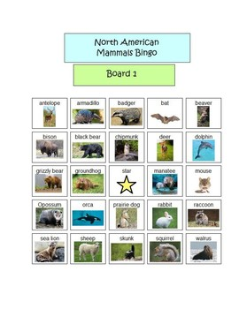 North American Mammals Bingo - 5 boards