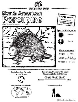 North American Porcupine - 15 Resources - Leveled Reading, Slides & Activities