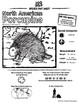 North American Porcupine -- 10 Resources -- Coloring Pages