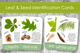 North American Tree & Leaf Identification Cards- Montessori