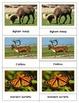 Animals of North America: Montessori Three Part Cards