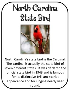 North Carolina State History Unit. 34 Pages! US History