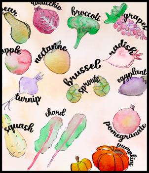 Northeastern Fall Harvest In-Season Watercolor Fruits and Veggies
