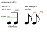 Music Note Anatomy/Split eighth notes/Poison Pattern with split eighth notes