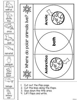 Interactive Notebook- Polar Animals