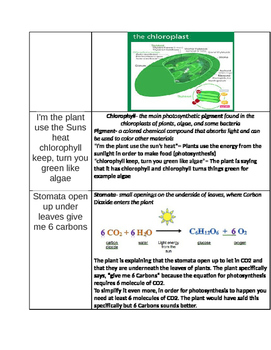 Note-taking Guide to Photosynthesis and Cellular Respiration Rap Song