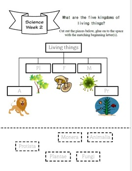 Notebooking Cycle 1 Science - Ages 4-6 (to be used with classical conversations)